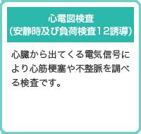 心電図検査 (安静時及び負荷検査12誘導)